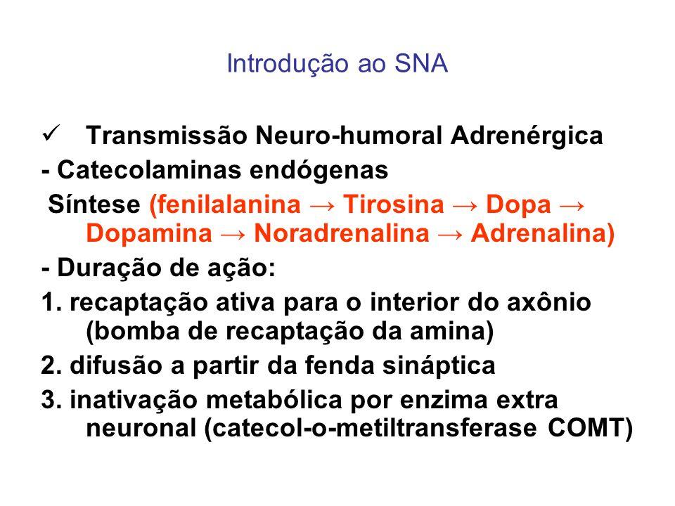 Introdução ao SNA Transmissão Neuro-humoral Adrenérgica. - Catecolaminas endógenas.