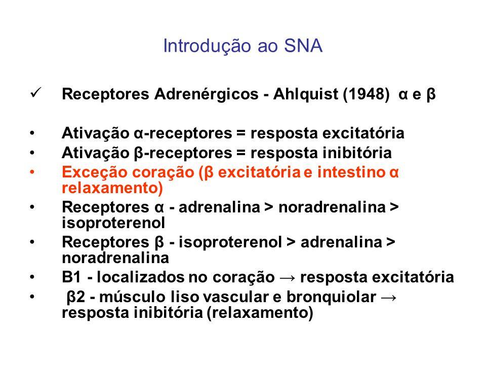 Introdução ao SNA Receptores Adrenérgicos - Ahlquist (1948) α e β