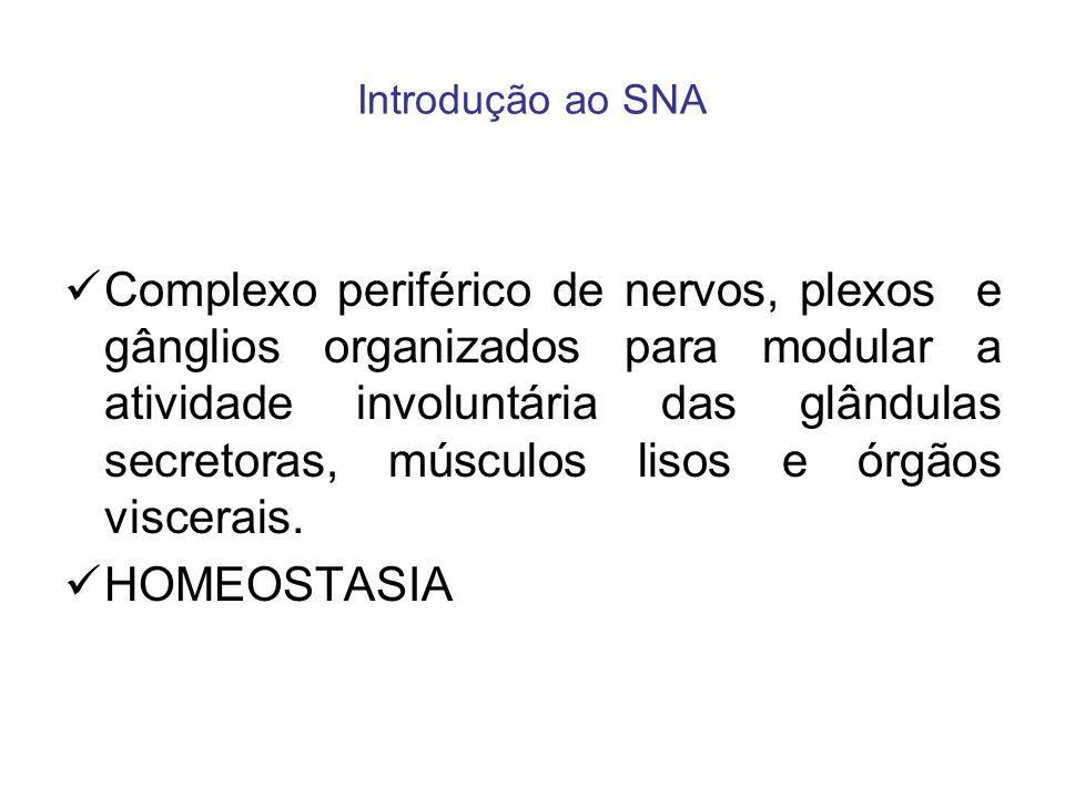 Introdução ao SNA