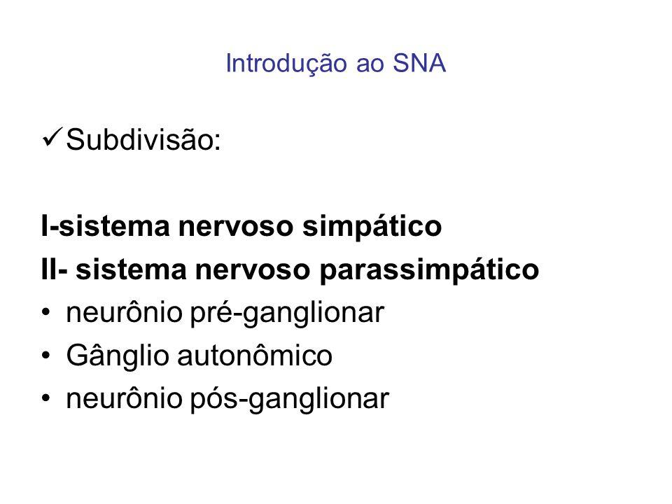 I-sistema nervoso simpático II- sistema nervoso parassimpático