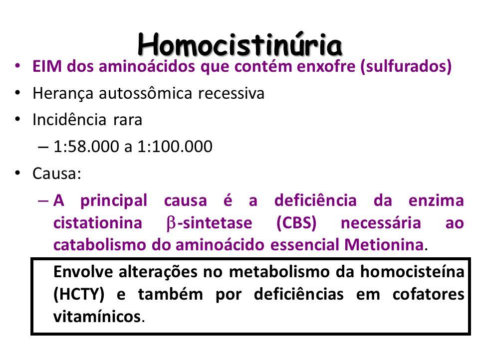 Homocistinúria EIM dos aminoácidos que contém enxofre (sulfurados)
