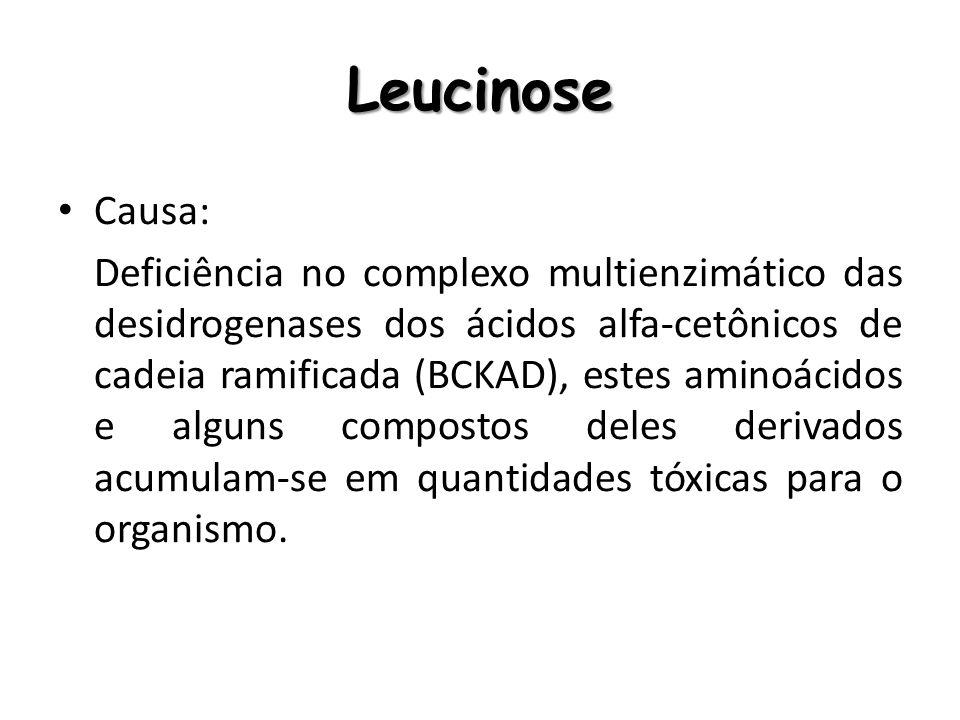 LeucinoseCausa: