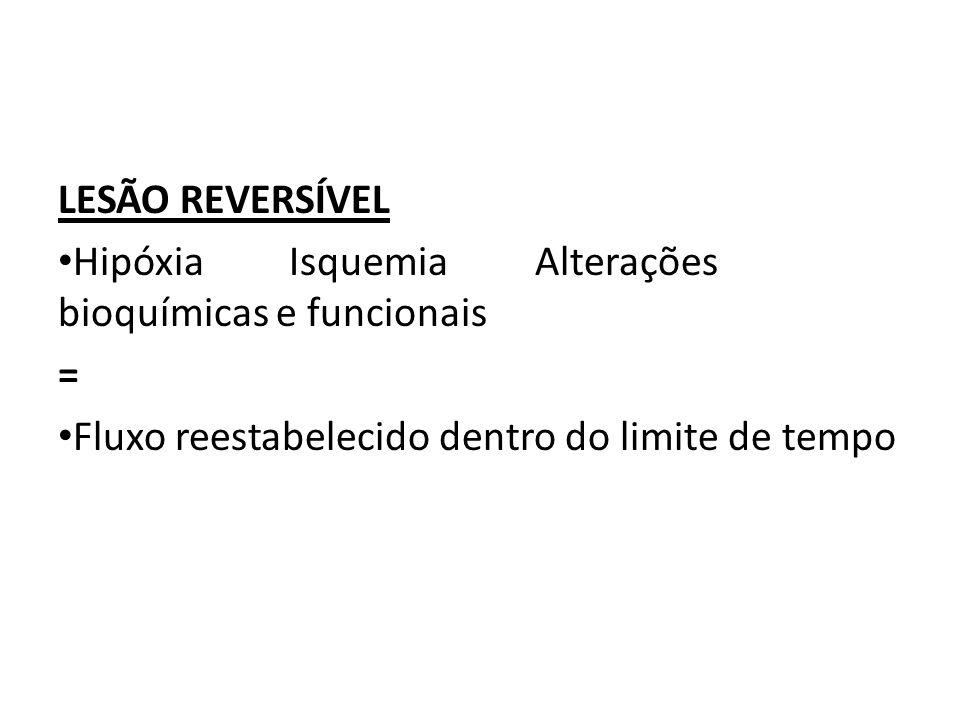 LESÃO REVERSÍVEL Hipóxia Isquemia Alterações bioquímicas e funcionais.