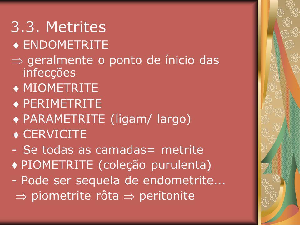 3.3. Metrites ENDOMETRITE  geralmente o ponto de ínicio das infecções