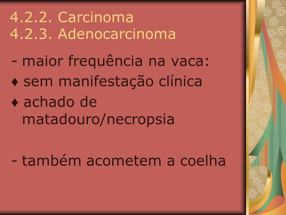 4.2.2. Carcinoma 4.2.3. Adenocarcinoma