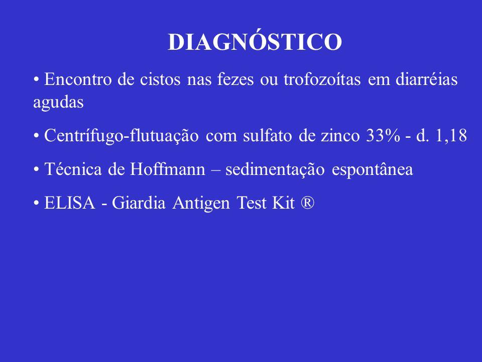 DIAGNÓSTICO Encontro de cistos nas fezes ou trofozoítas em diarréias agudas. Centrífugo-flutuação com sulfato de zinco 33% - d. 1,18.