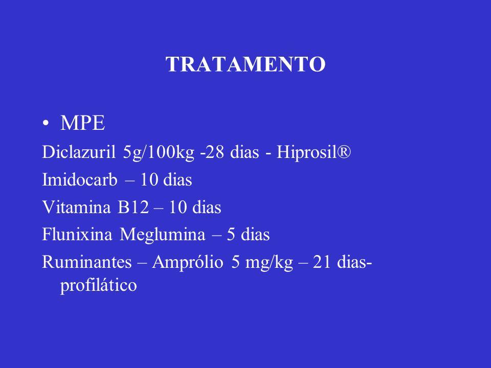 TRATAMENTO MPE Diclazuril 5g/100kg -28 dias - Hiprosil®