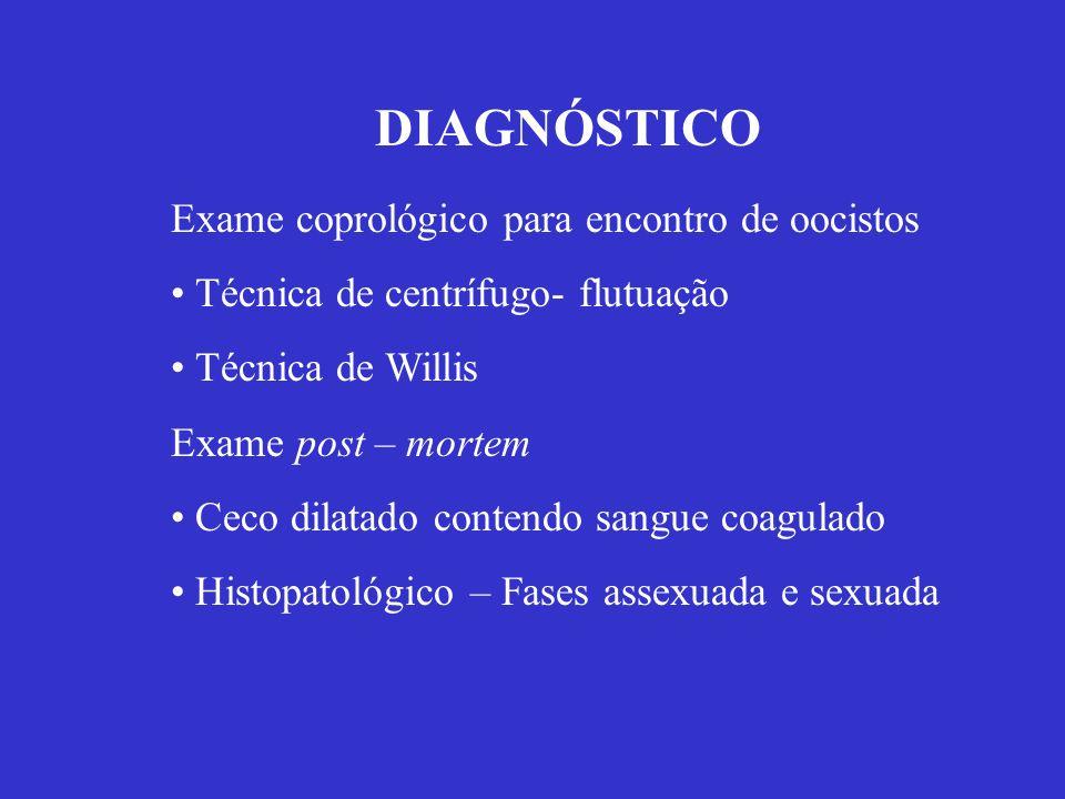 DIAGNÓSTICO Exame coprológico para encontro de oocistos