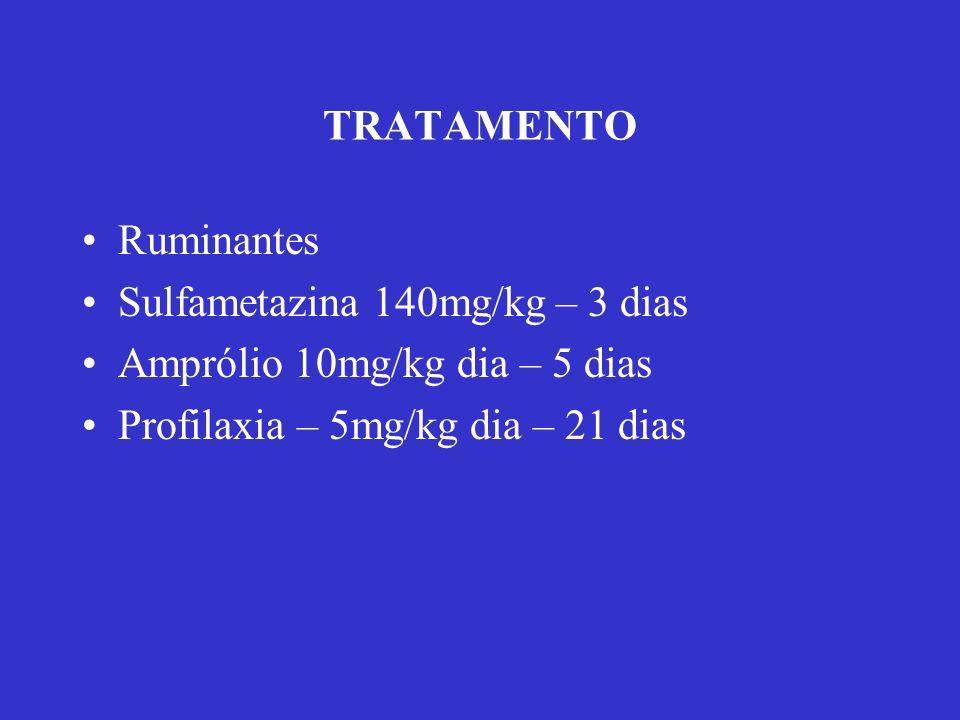 TRATAMENTO Ruminantes. Sulfametazina 140mg/kg – 3 dias.