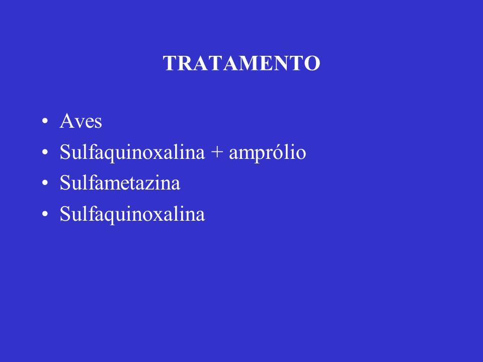 TRATAMENTO Aves Sulfaquinoxalina + amprólio Sulfametazina Sulfaquinoxalina