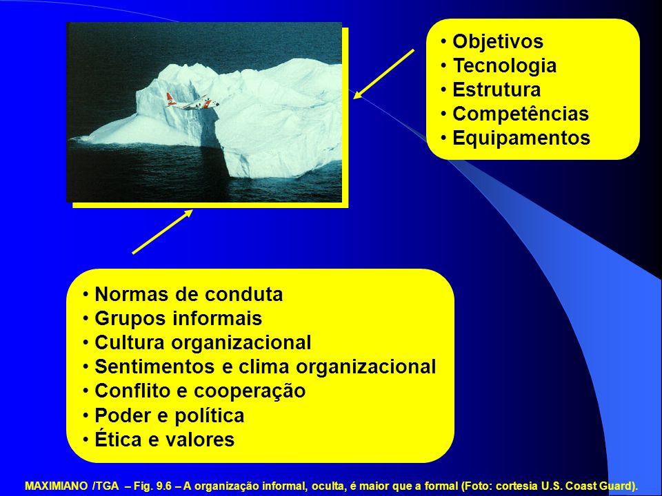 Cultura organizacional Sentimentos e clima organizacional