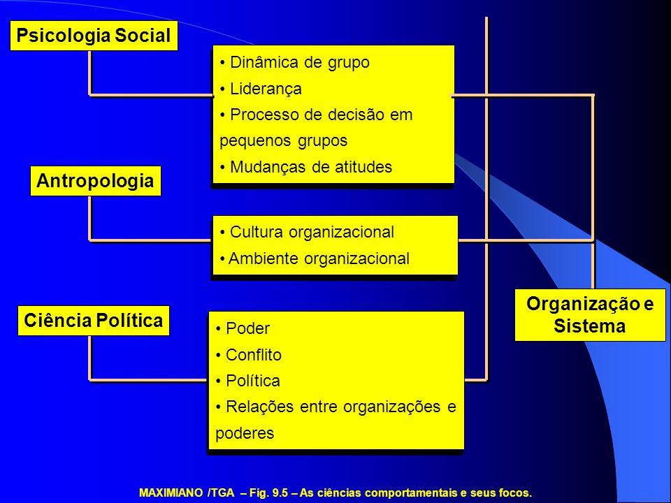 MAXIMIANO /TGA – Fig. 9.5 – As ciências comportamentais e seus focos.
