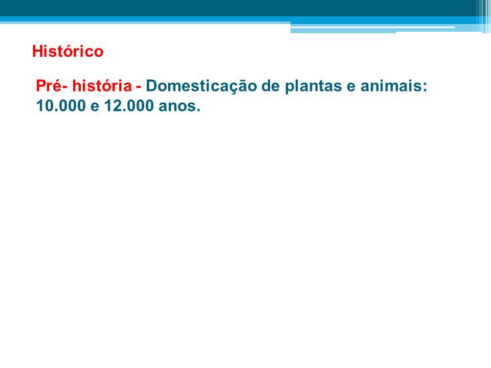 Histórico Pré- história - Domesticação de plantas e animais: 10.000 e 12.000 anos.