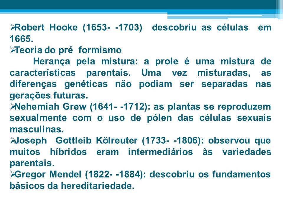 Robert Hooke (1653- -1703) descobriu as células em 1665.