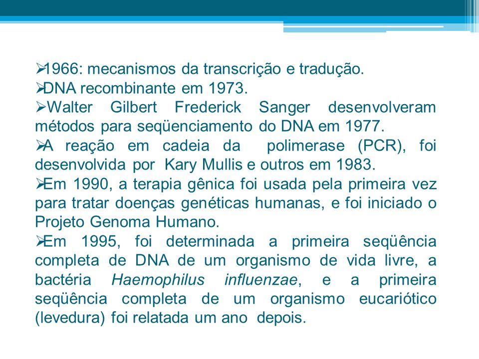 1966: mecanismos da transcrição e tradução.