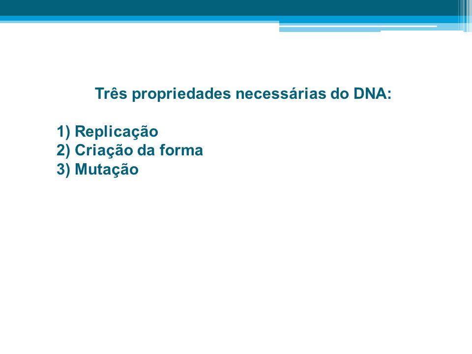 Três propriedades necessárias do DNA: