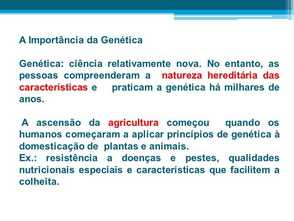 A Importância da Genética