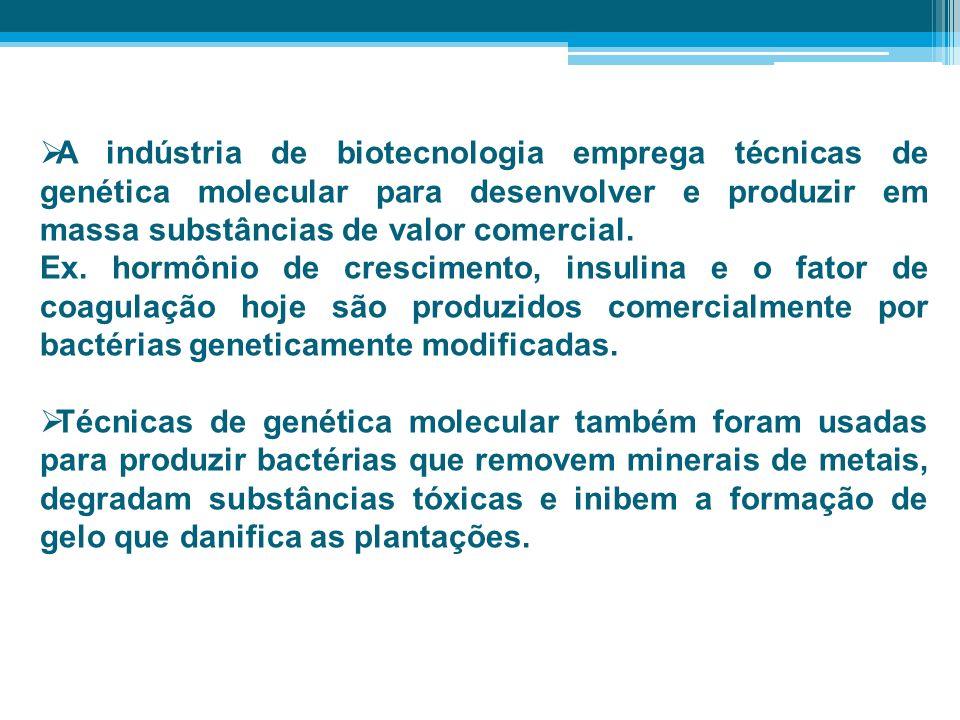 A indústria de biotecnologia emprega técnicas de genética molecular para desenvolver e produzir em massa substâncias de valor comercial.