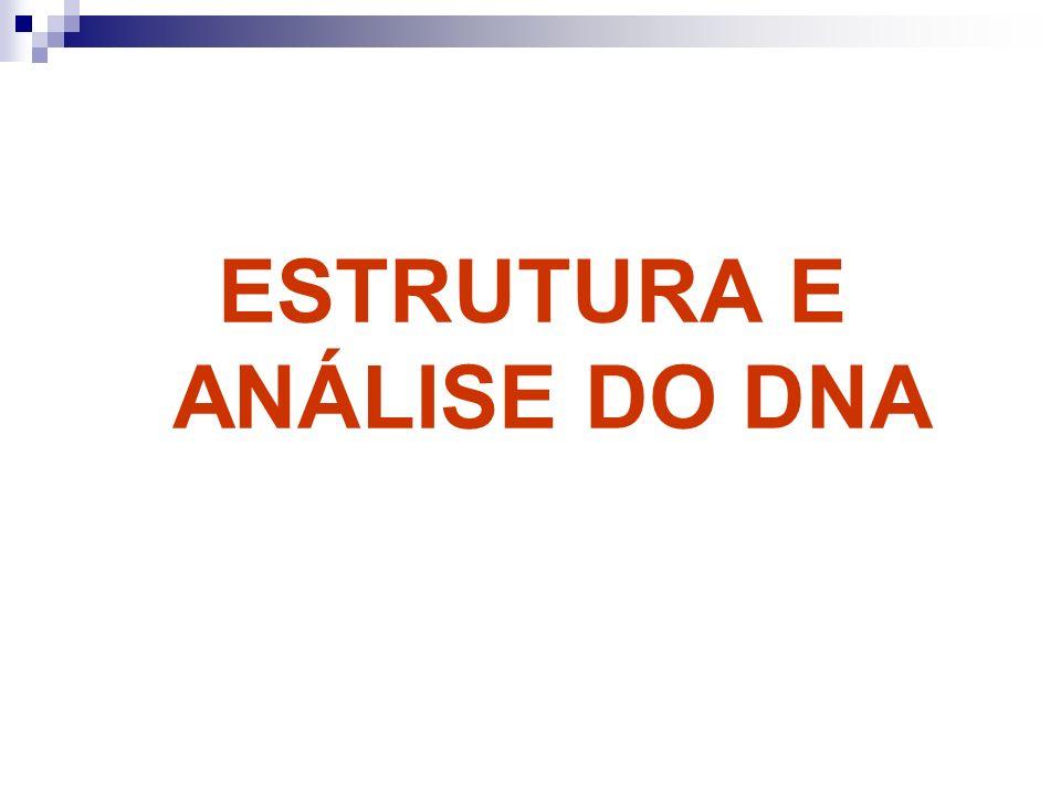 ESTRUTURA E ANÁLISE DO DNA