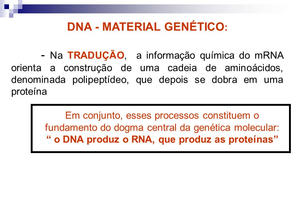 DNA - MATERIAL GENÉTICO: