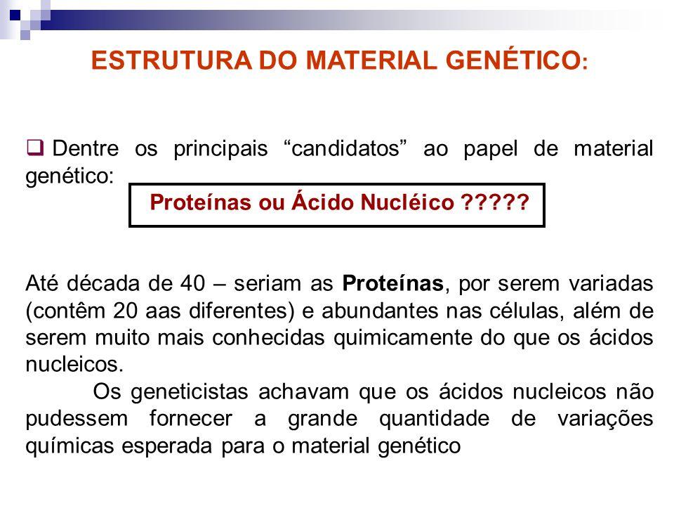 Proteínas ou Ácido Nucléico