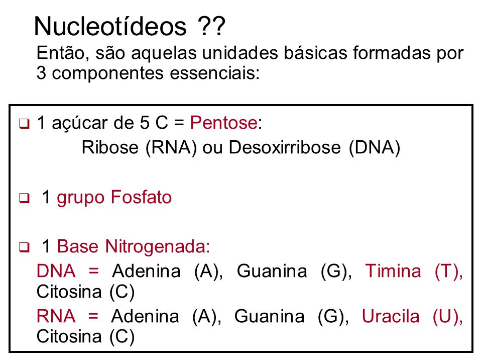 Ribose (RNA) ou Desoxirribose (DNA)