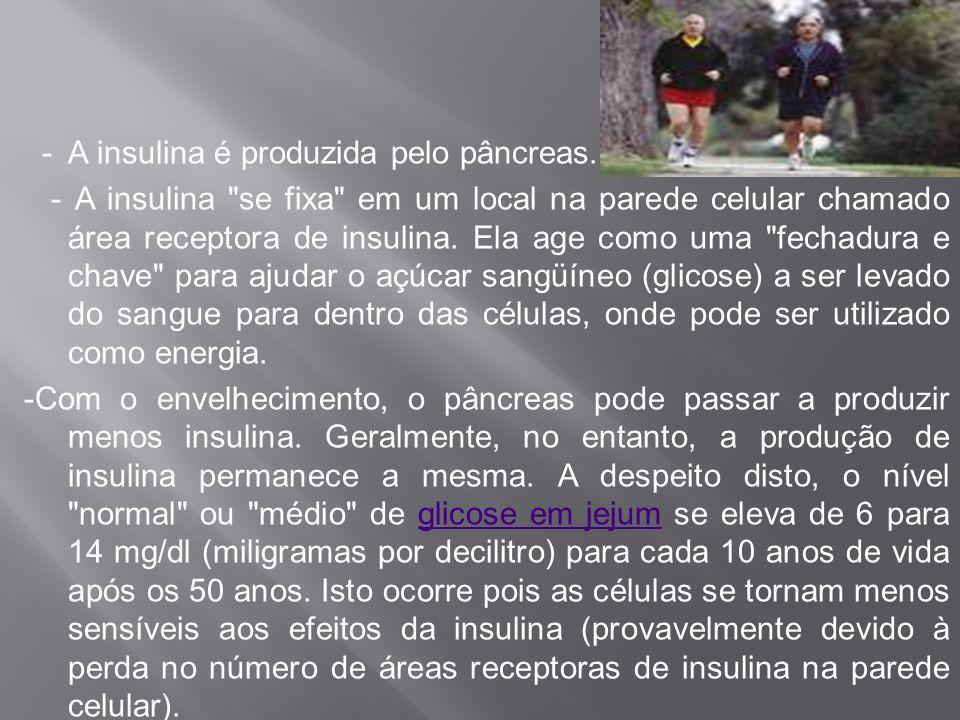 - A insulina é produzida pelo pâncreas
