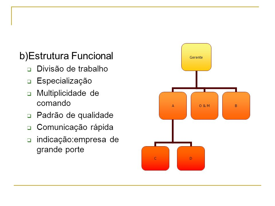 b)Estrutura Funcional