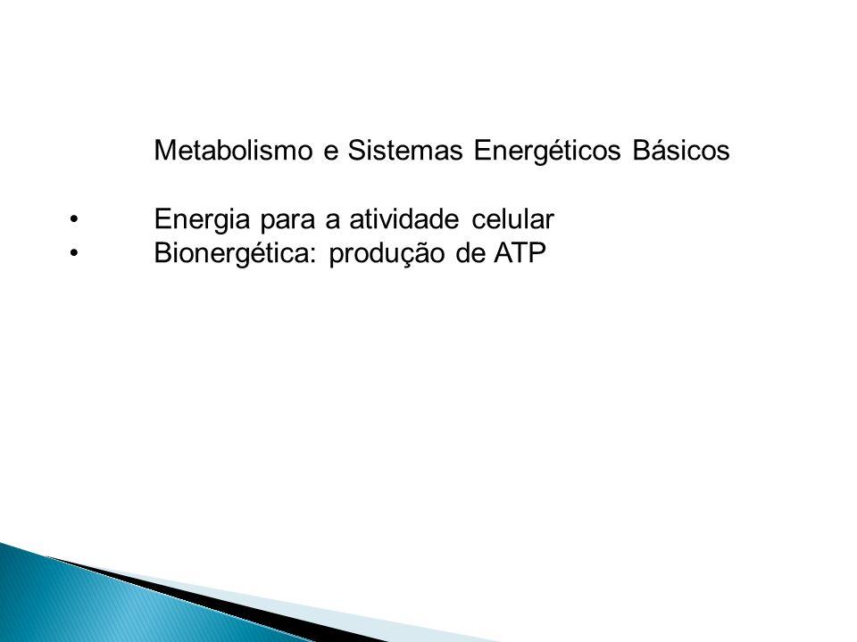 Metabolismo e Sistemas Energéticos Básicos