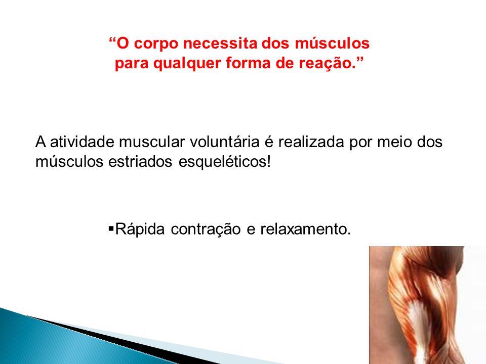O corpo necessita dos músculos para qualquer forma de reação.