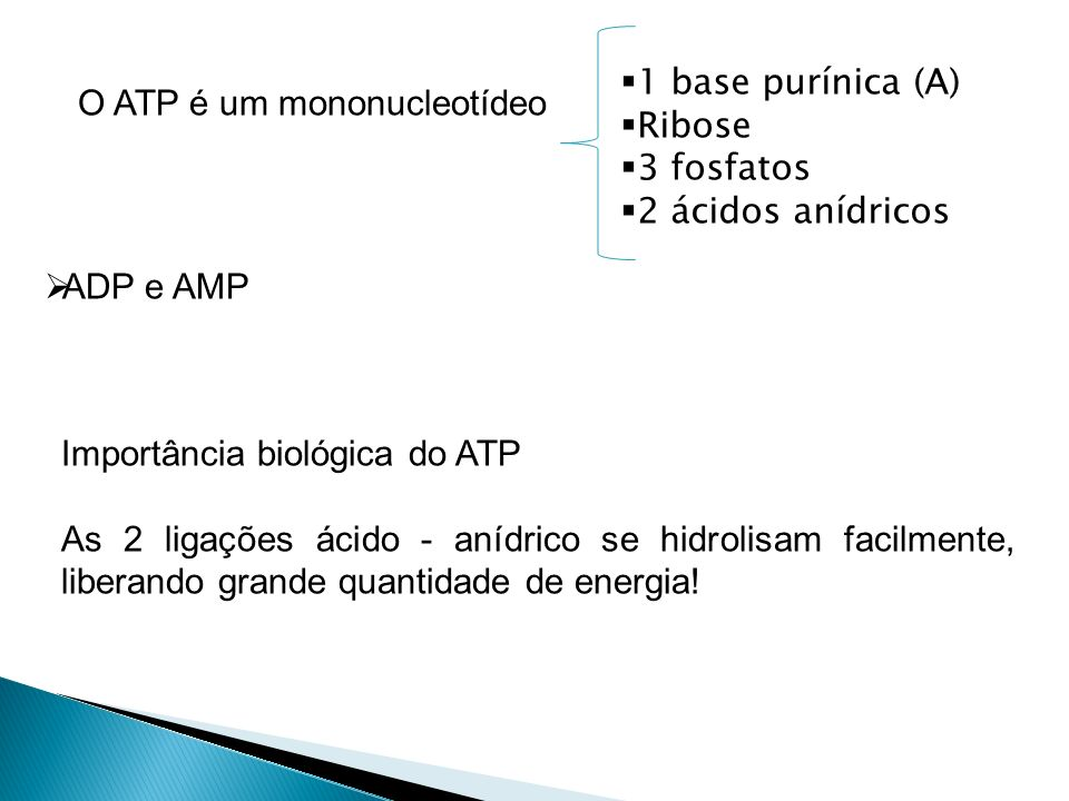 1 base purínica (A) Ribose. 3 fosfatos. 2 ácidos anídricos. O ATP é um mononucleotídeo. ADP e AMP.