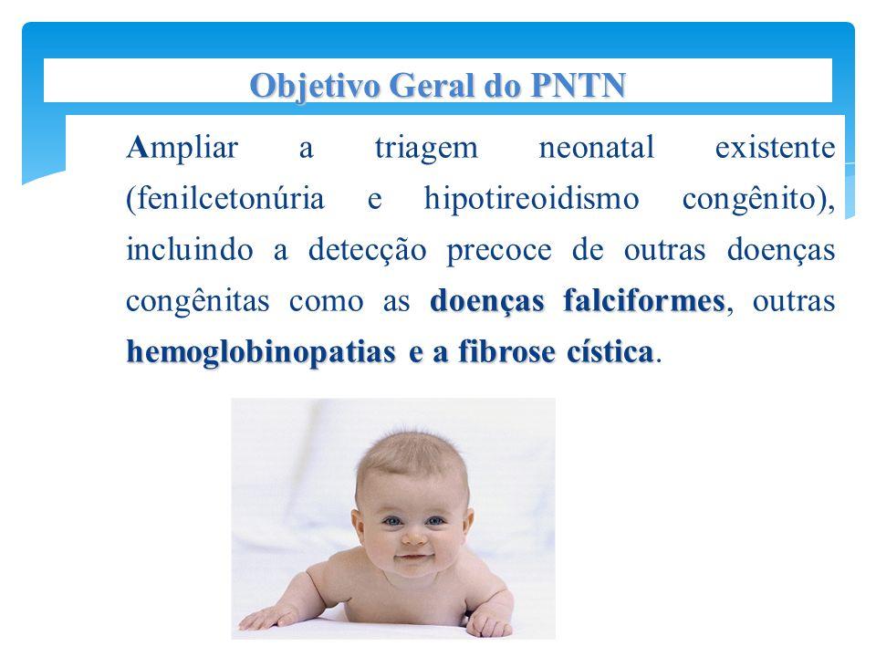 Objetivo Geral do PNTN