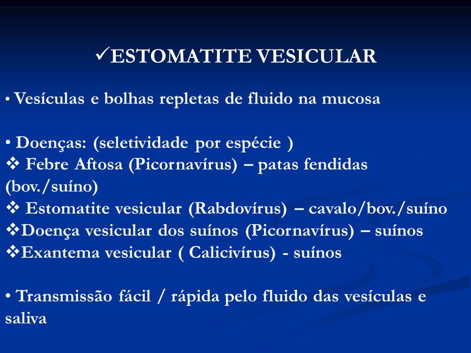 ESTOMATITE VESICULAR Doenças: (seletividade por espécie )