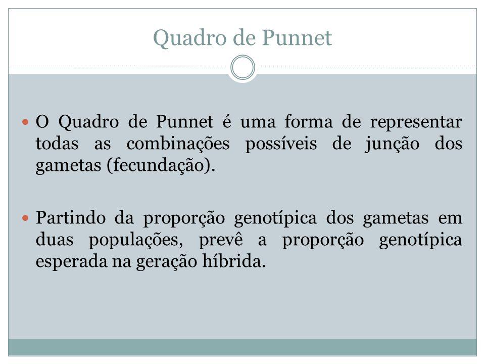 Quadro de Punnet O Quadro de Punnet é uma forma de representar todas as combinações possíveis de junção dos gametas (fecundação).