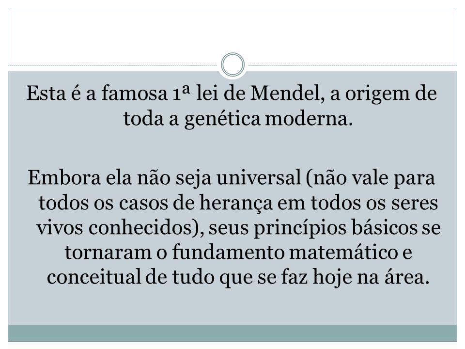 Esta é a famosa 1ª lei de Mendel, a origem de toda a genética moderna.