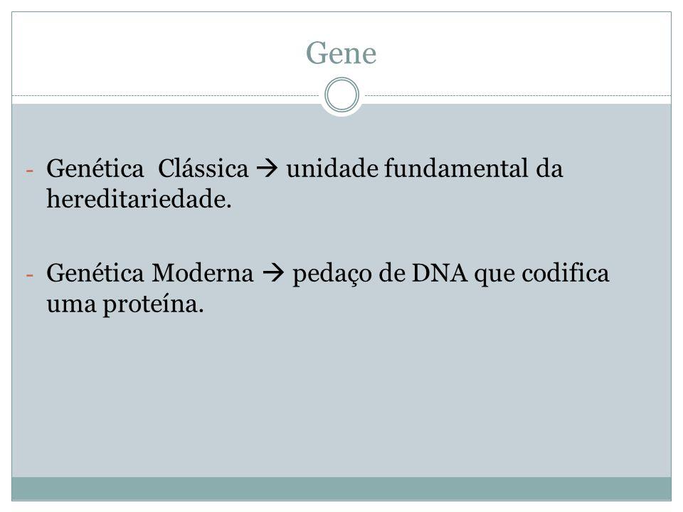 Gene Genética Clássica  unidade fundamental da hereditariedade.