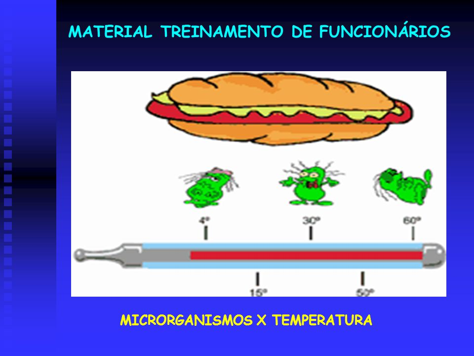 MICRORGANISMOS X TEMPERATURA