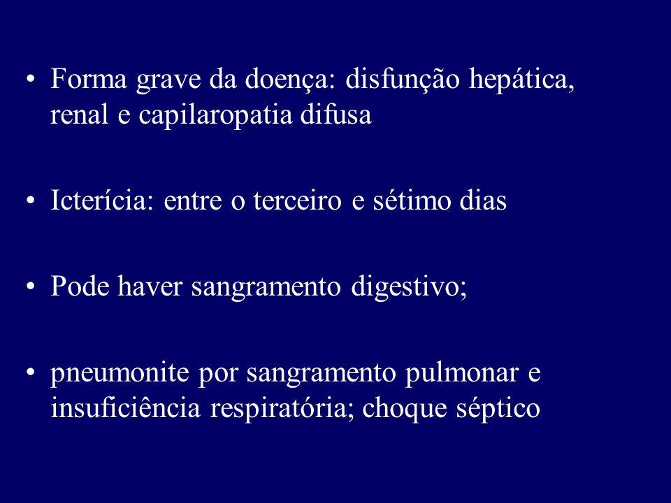 Forma grave da doença: disfunção hepática, renal e capilaropatia difusa