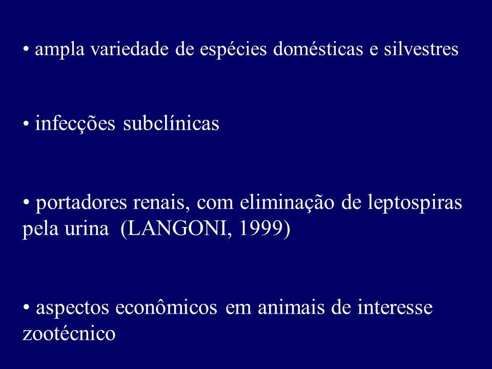 aspectos econômicos em animais de interesse zootécnico