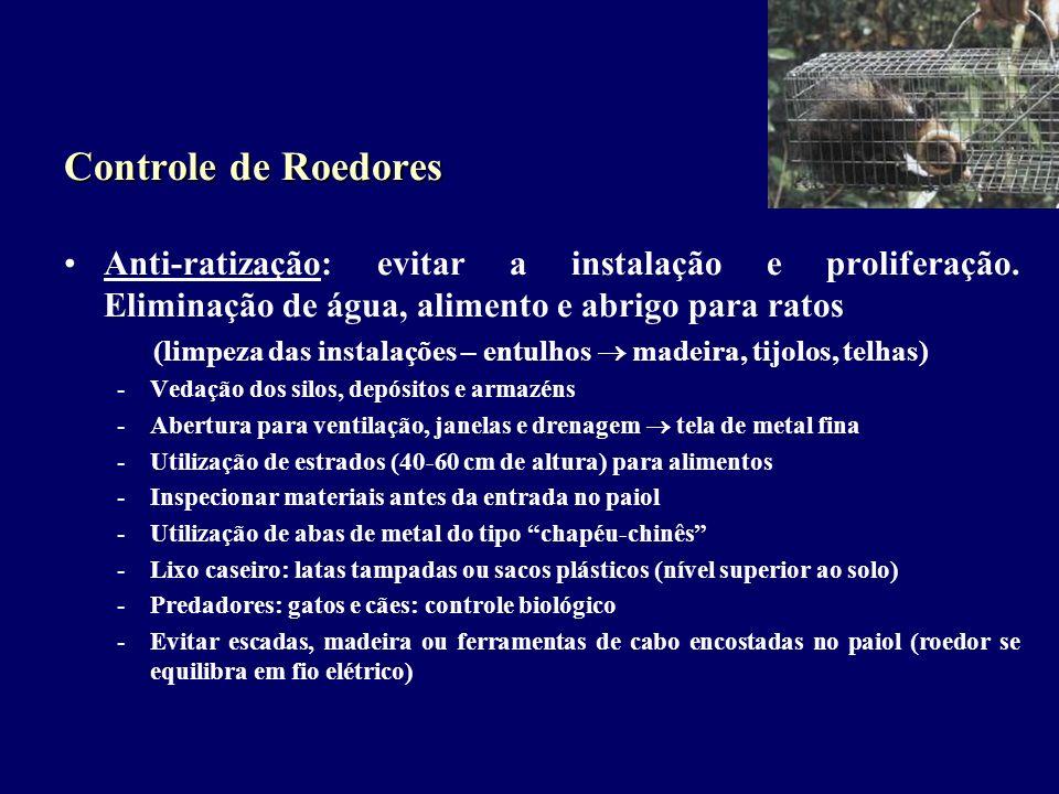 (limpeza das instalações – entulhos  madeira, tijolos, telhas)