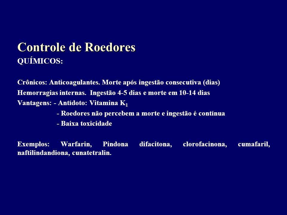 Controle de Roedores QUÍMICOS: