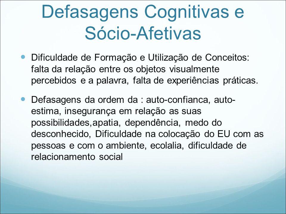 Defasagens Cognitivas e Sócio-Afetivas
