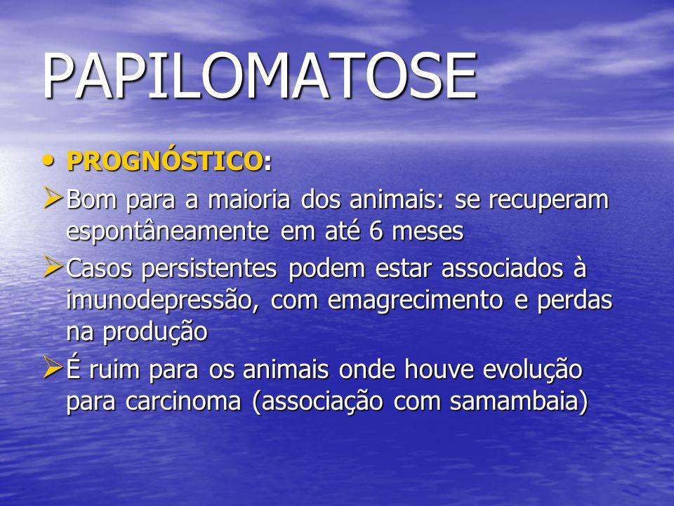 PAPILOMATOSE PROGNÓSTICO: