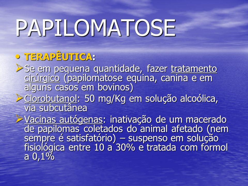 PAPILOMATOSE TERAPÊUTICA: