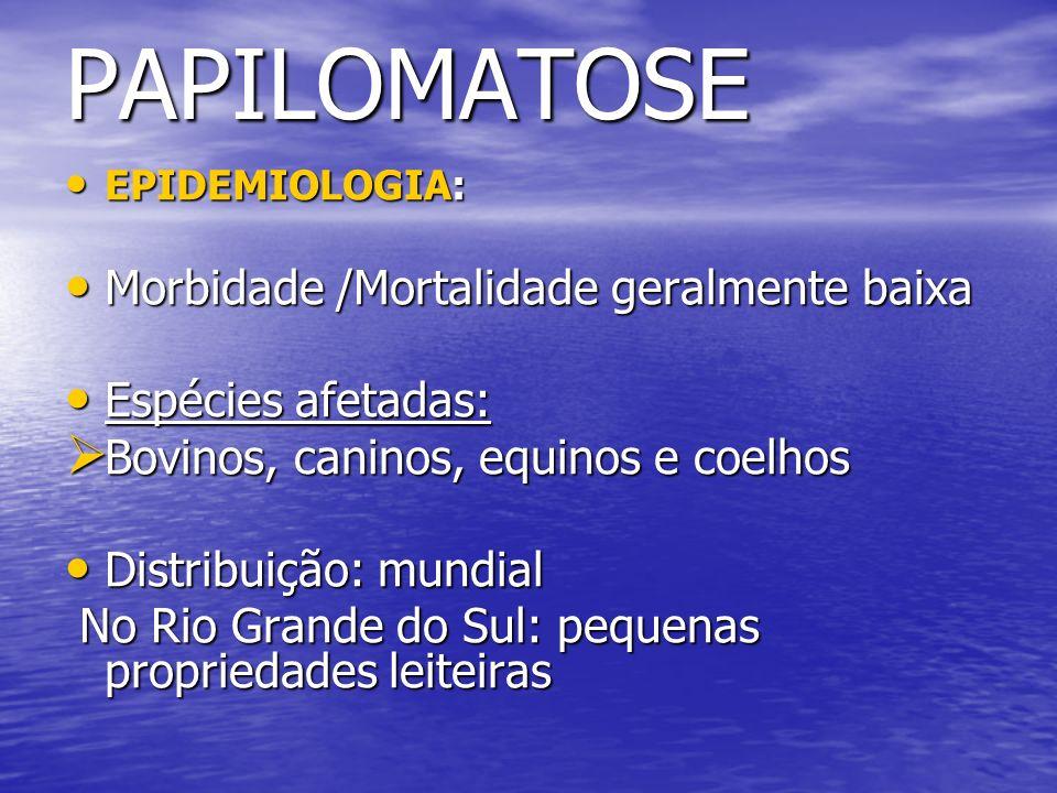 PAPILOMATOSE Morbidade /Mortalidade geralmente baixa