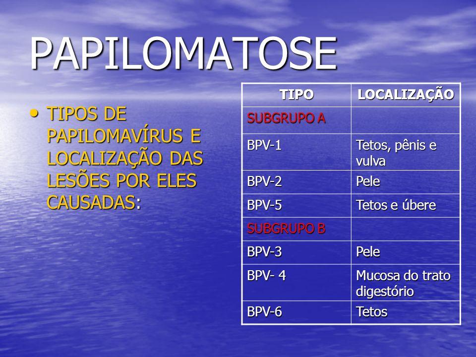 PAPILOMATOSE TIPO. LOCALIZAÇÃO. SUBGRUPO A. BPV-1. Tetos, pênis e vulva. BPV-2. Pele. BPV-5.