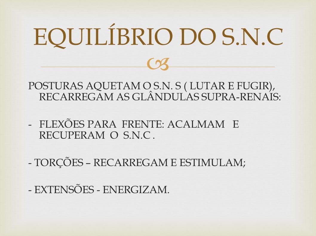 EQUILÍBRIO DO S.N.C