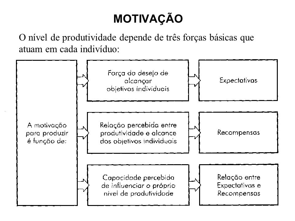 MOTIVAÇÃO O nível de produtividade depende de três forças básicas que atuam em cada indivíduo: