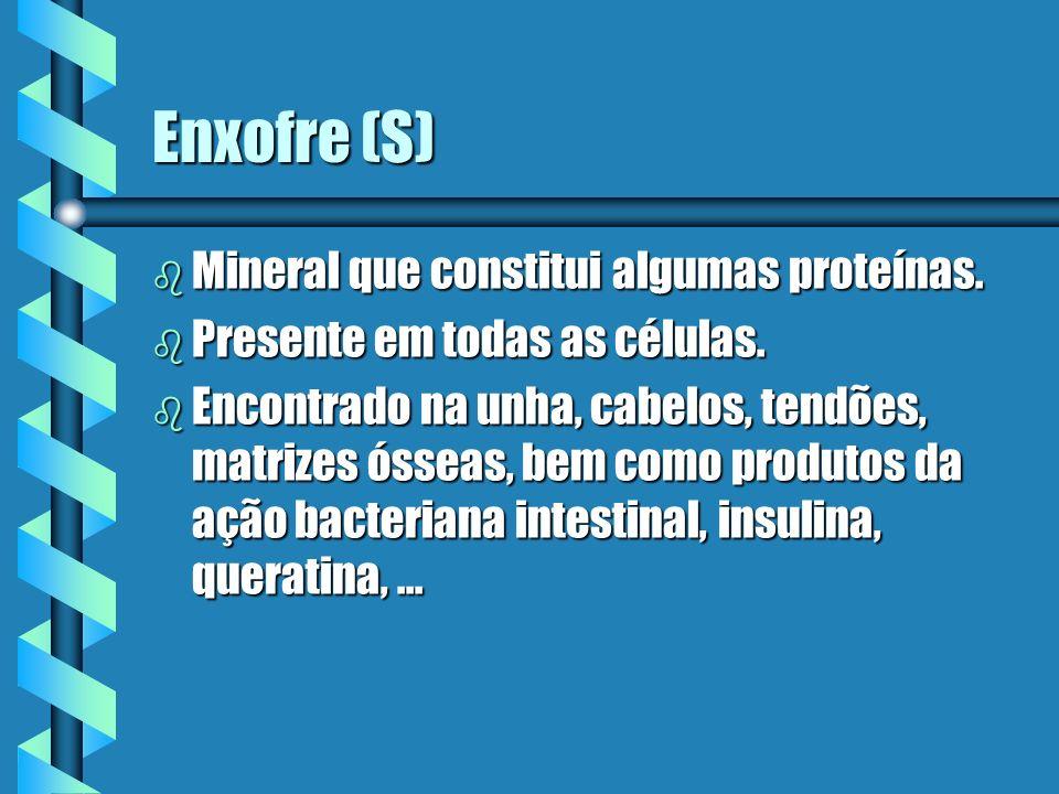 Enxofre (S) Mineral que constitui algumas proteínas.