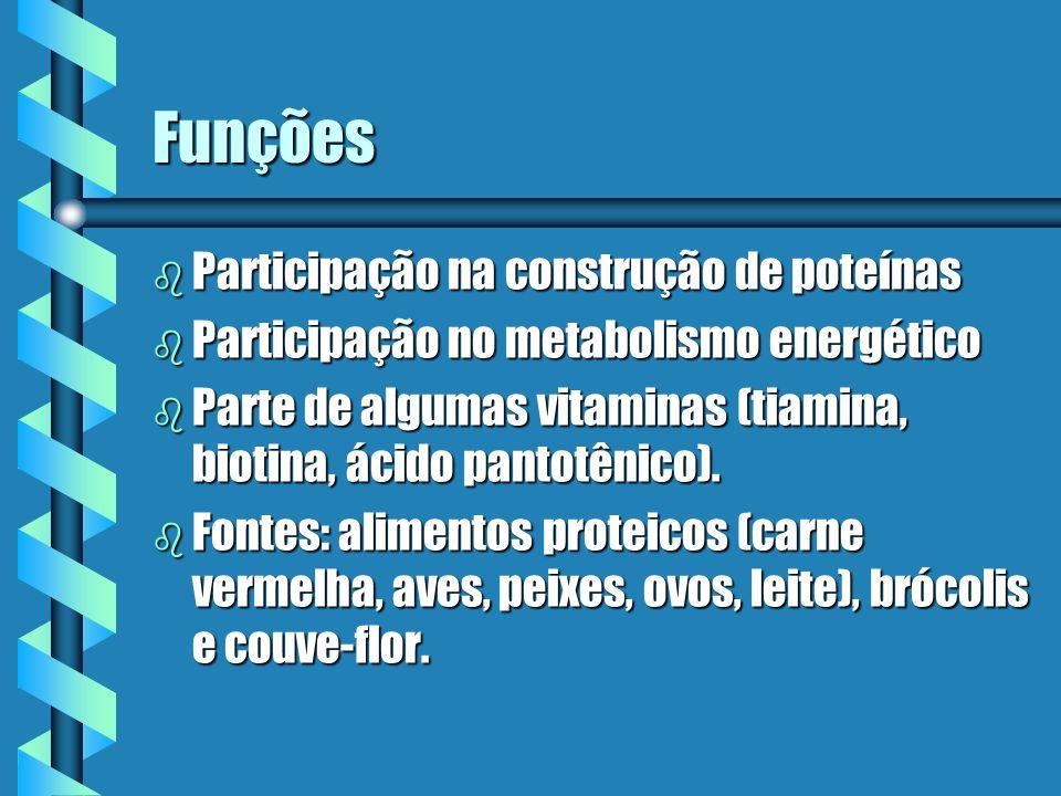 Funções Participação na construção de poteínas